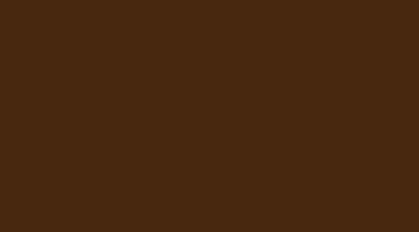 Media 2070